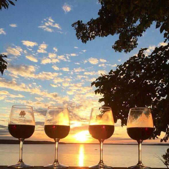 Carlos Creek wine at sunset